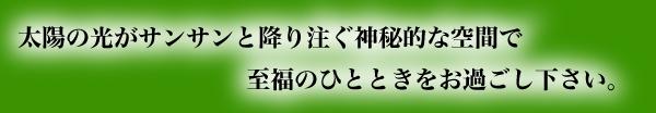 エスポワール 〒286-0221 千葉県富里市七栄86-10