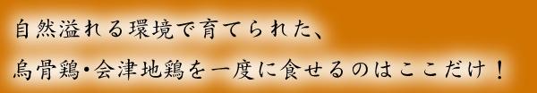 とり鉄 〒286-0033 千葉県成田市花崎町816-23 山田ビル1F
