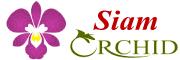 Siam ORCHID~サヤームオーキッド~ 〒286-0221 千葉県富里市七栄647-121